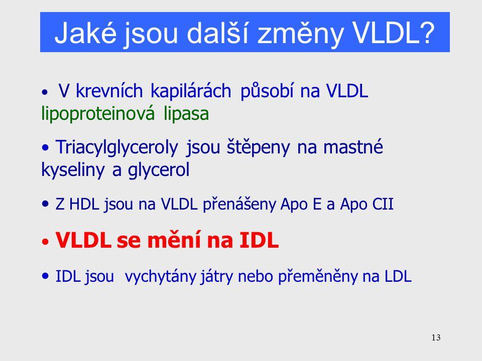 Jaké jsou další změny VLDL