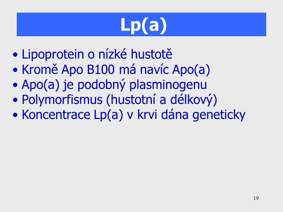 Lp(a) Lipoprotein o nízké hustotě Kromě Apo B100 má navíc Apo(a)