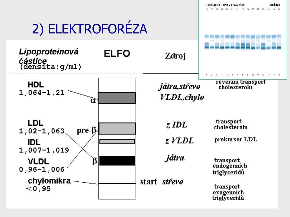 2) ELEKTROFORÉZA