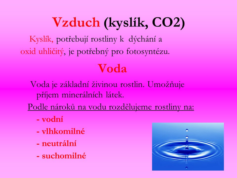 Vzduch (kyslík, CO2) Voda