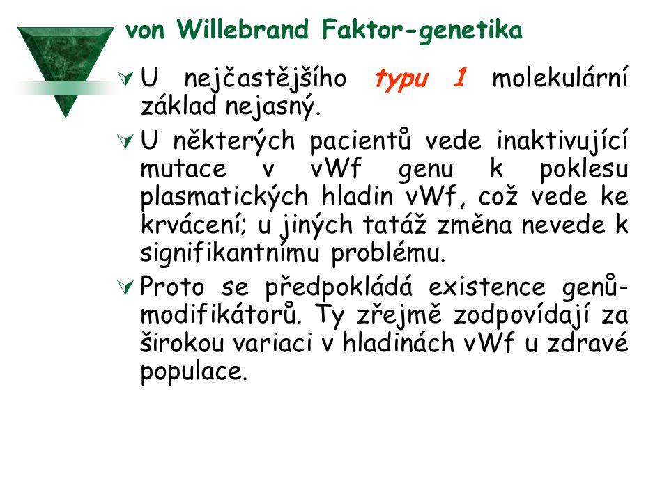 von Willebrand Faktor-genetika