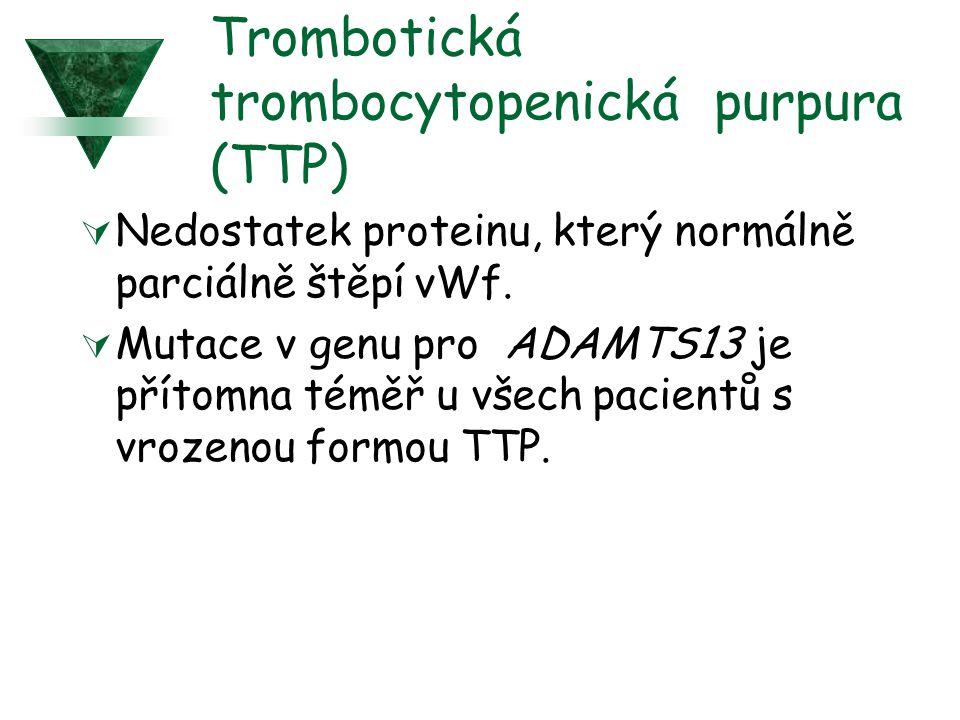 Trombotická trombocytopenická purpura (TTP)