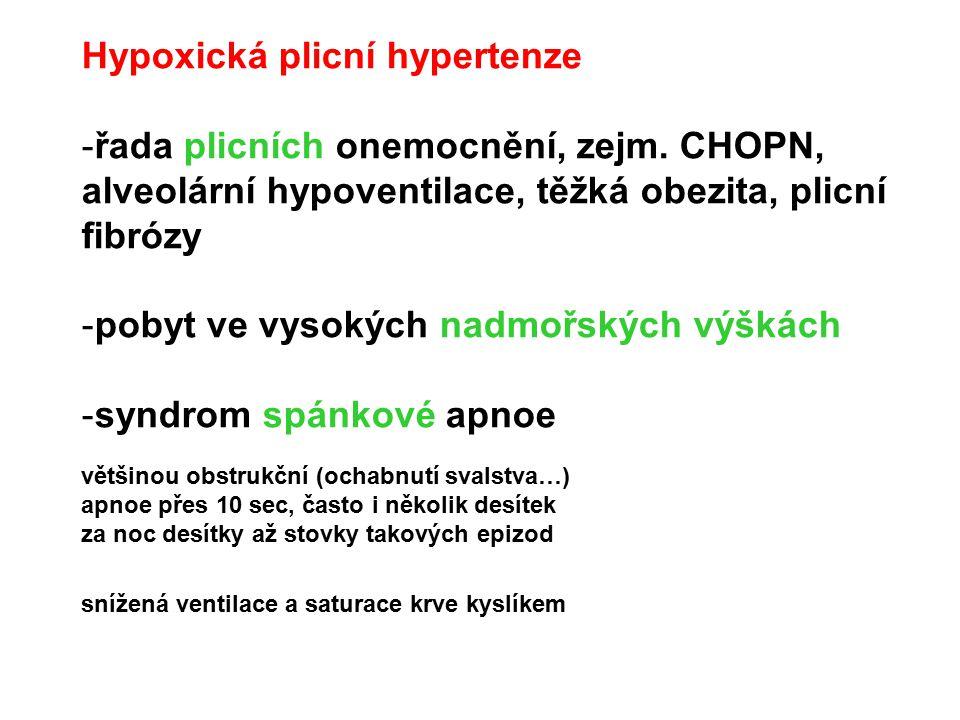 Hypoxická plicní hypertenze