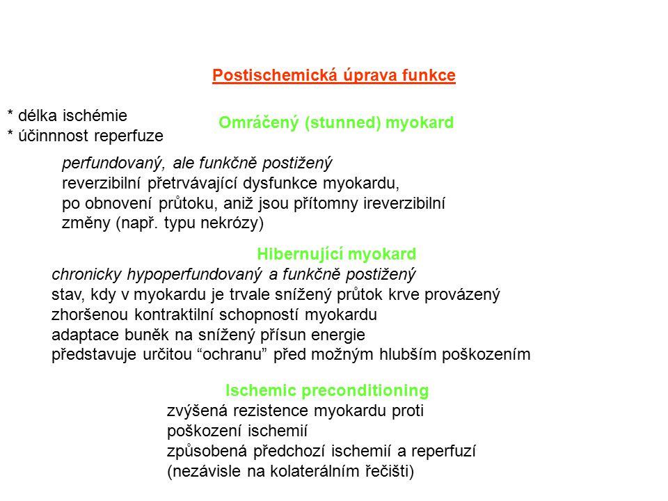 Postischemická úprava funkce * délka ischémie * účinnnost reperfuze