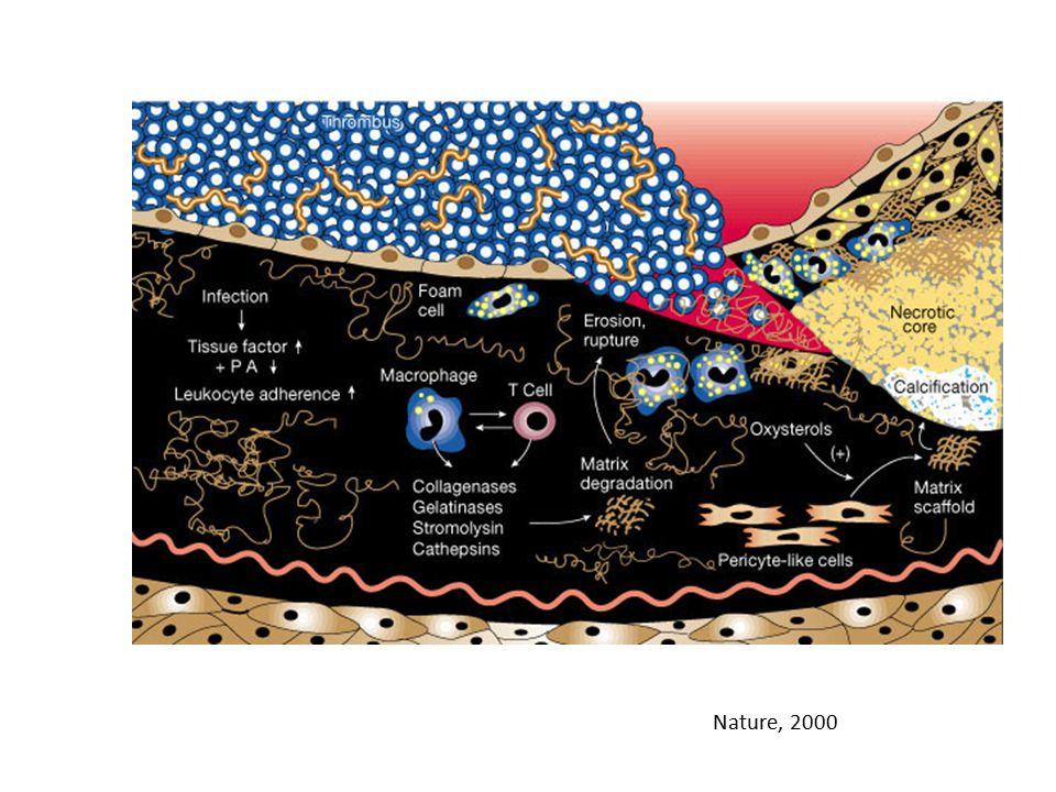 Nature, 2000