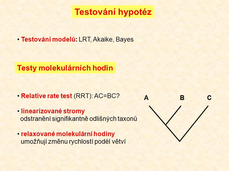 Testování hypotéz Testy molekulárních hodin