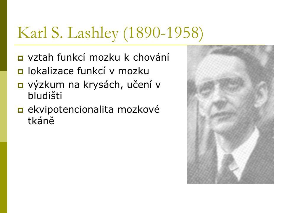 Karl S. Lashley (1890-1958) vztah funkcí mozku k chování