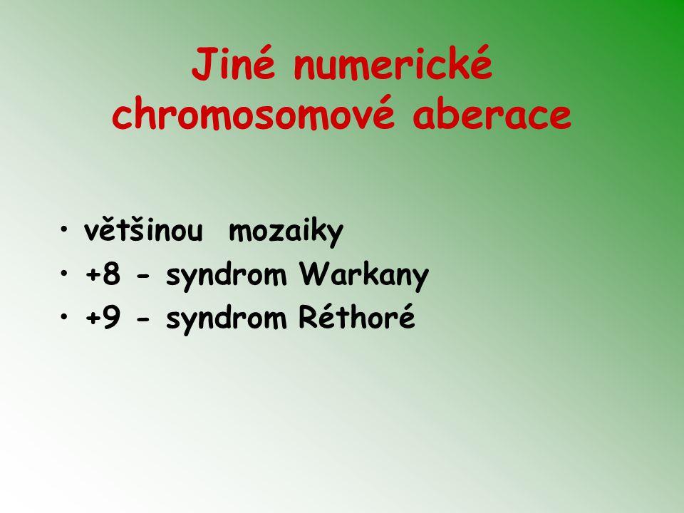 Jiné numerické chromosomové aberace