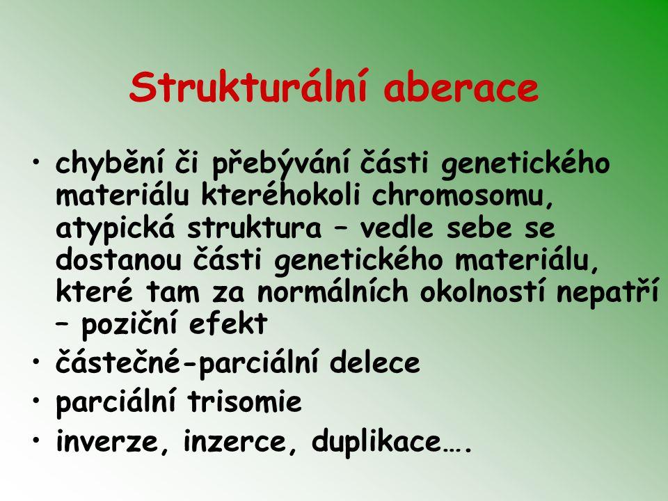 Strukturální aberace