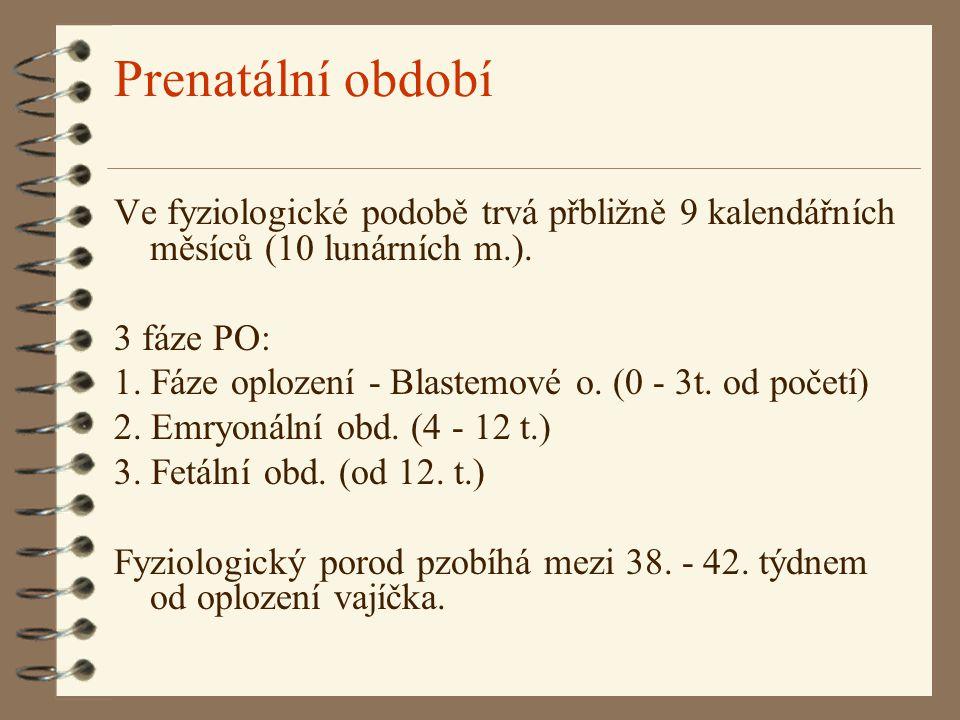 Prenatální období Ve fyziologické podobě trvá přbližně 9 kalendářních měsíců (10 lunárních m.). 3 fáze PO: