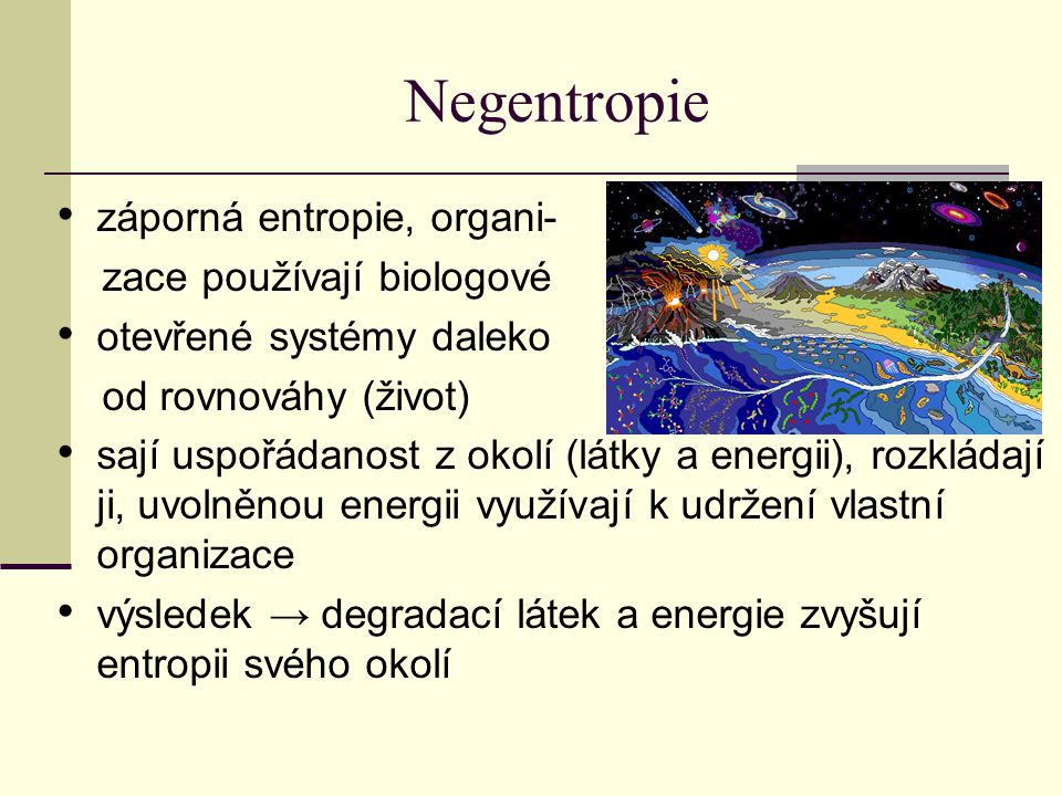 Negentropie záporná entropie, organi- zace používají biologové