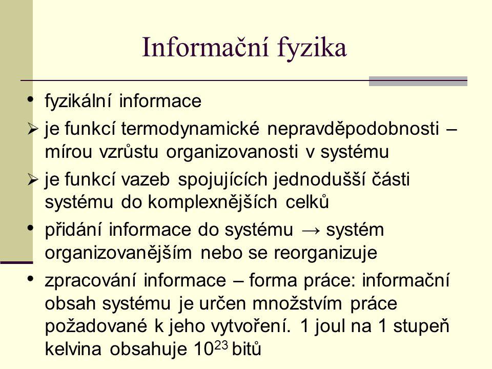 Informační fyzika fyzikální informace
