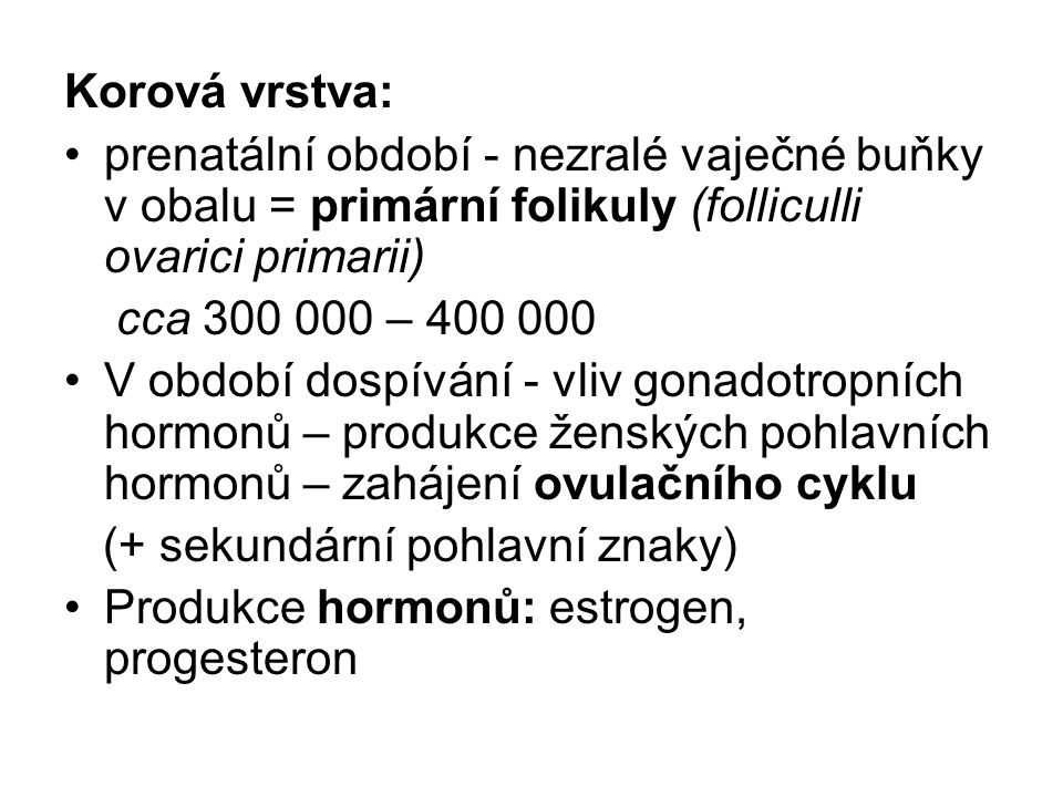Korová vrstva: prenatální období - nezralé vaječné buňky v obalu = primární folikuly (folliculli ovarici primarii)