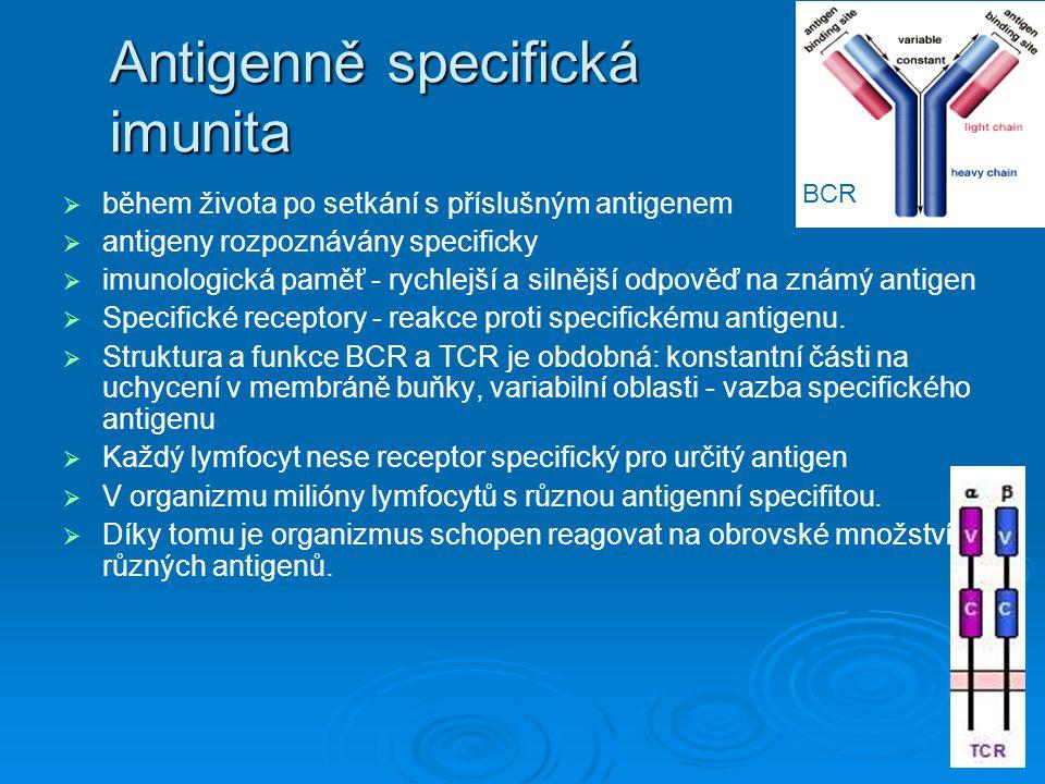Antigenně specifická imunita