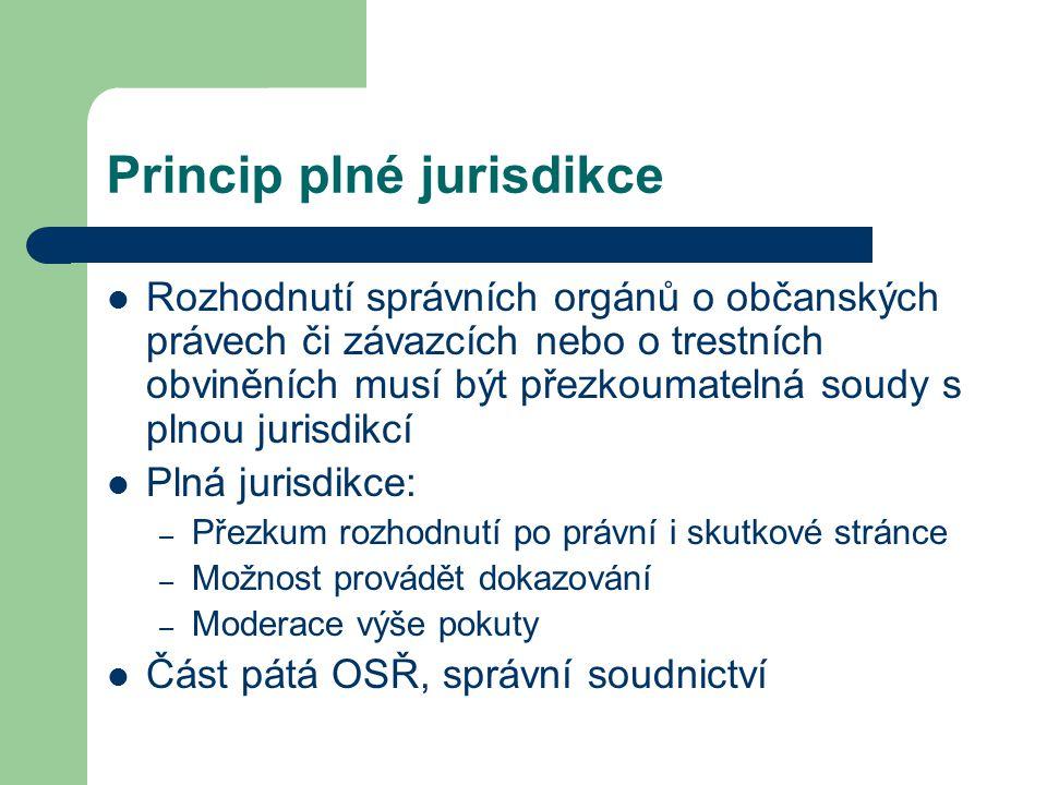 Princip plné jurisdikce