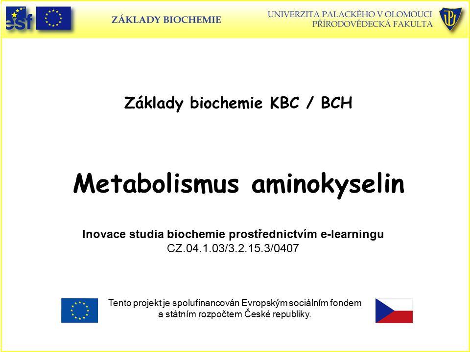 Základy biochemie KBC / BCH