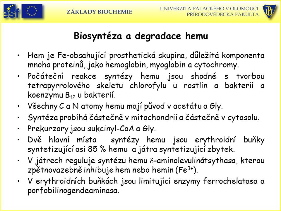 Biosyntéza a degradace hemu