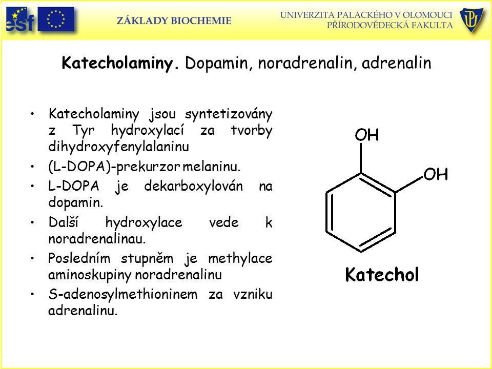Katecholaminy. Dopamin, noradrenalin, adrenalin
