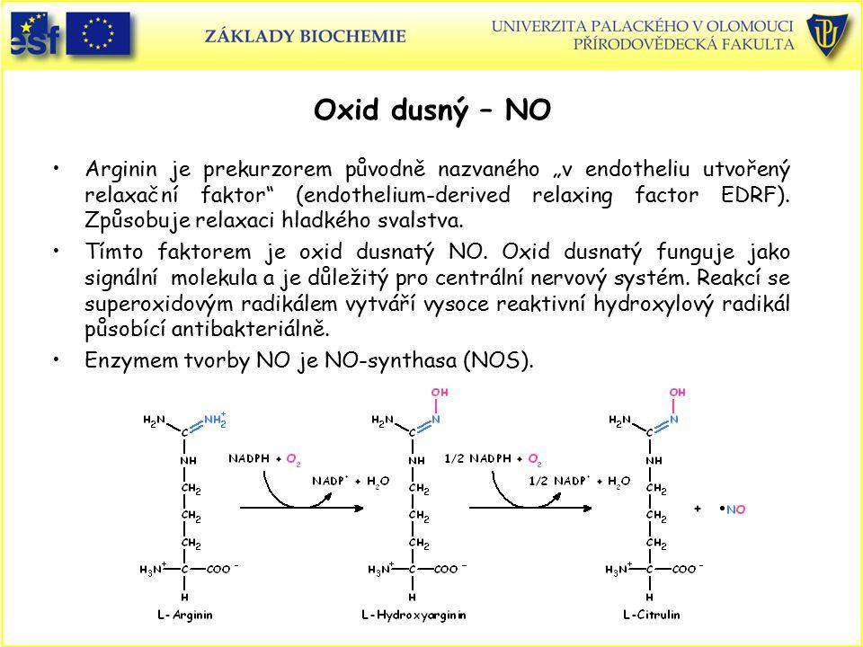 Oxid dusný – NO