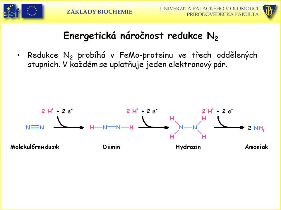 Energetická náročnost redukce N2