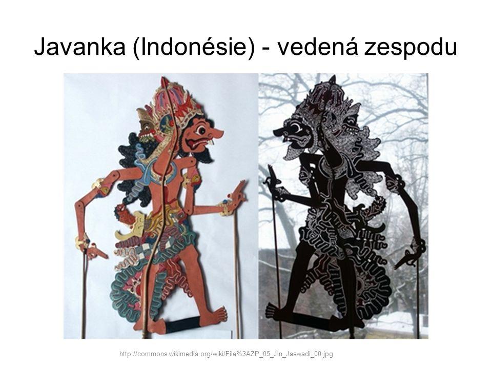 Javanka (Indonésie) - vedená zespodu