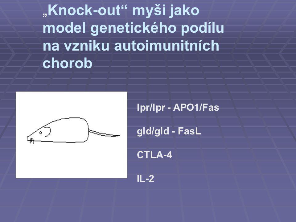 """""""Knock-out myši jako model genetického podílu na vzniku autoimunitních chorob"""