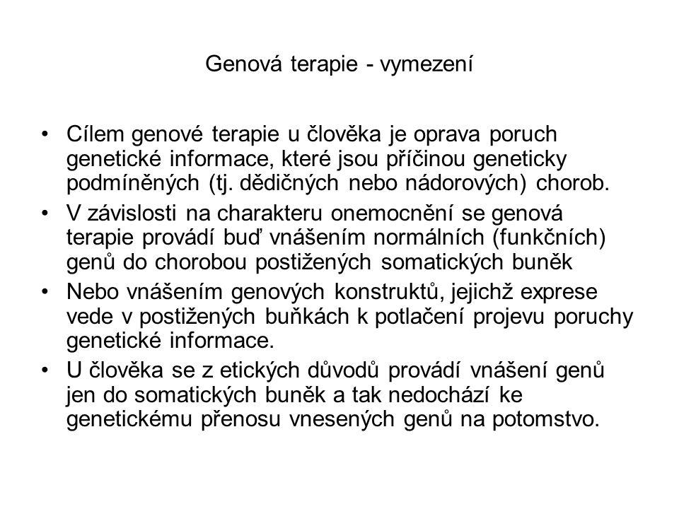 Genová terapie - vymezení