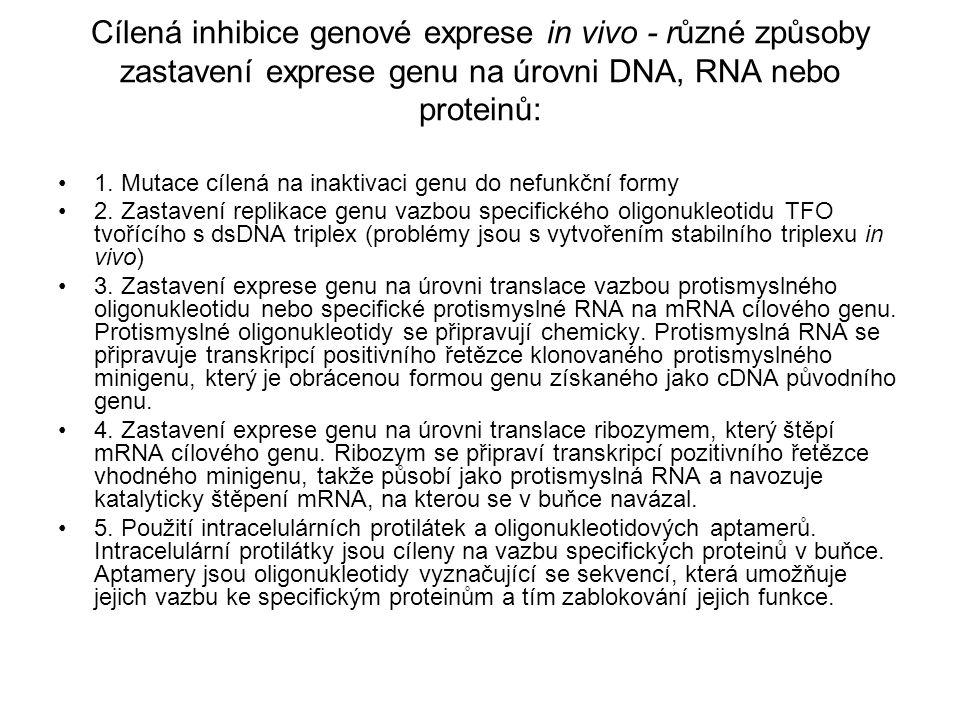 Cílená inhibice genové exprese in vivo - různé způsoby zastavení exprese genu na úrovni DNA, RNA nebo proteinů: