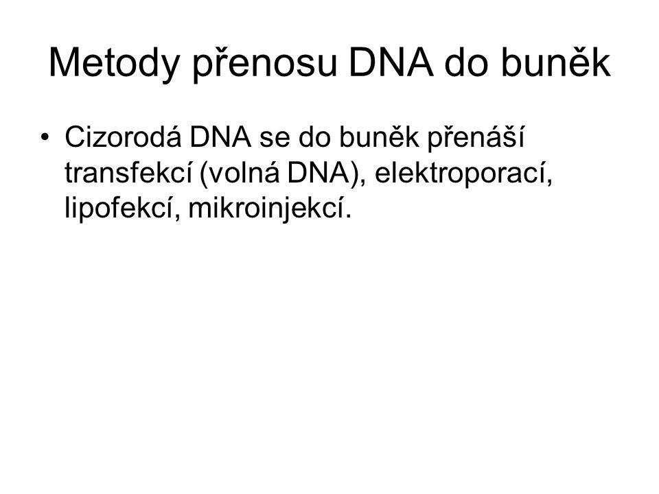 Metody přenosu DNA do buněk