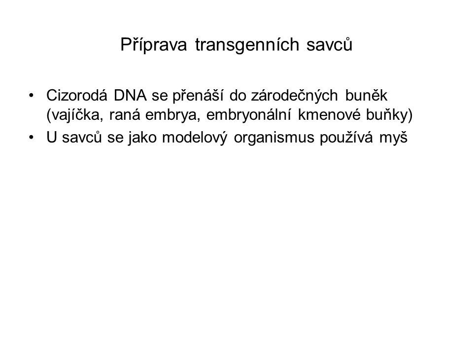 Příprava transgenních savců