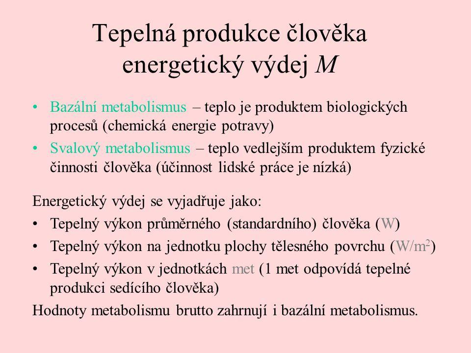 Tepelná produkce člověka energetický výdej M