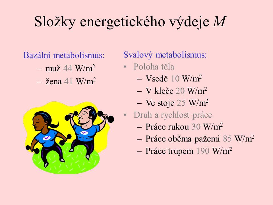Složky energetického výdeje M