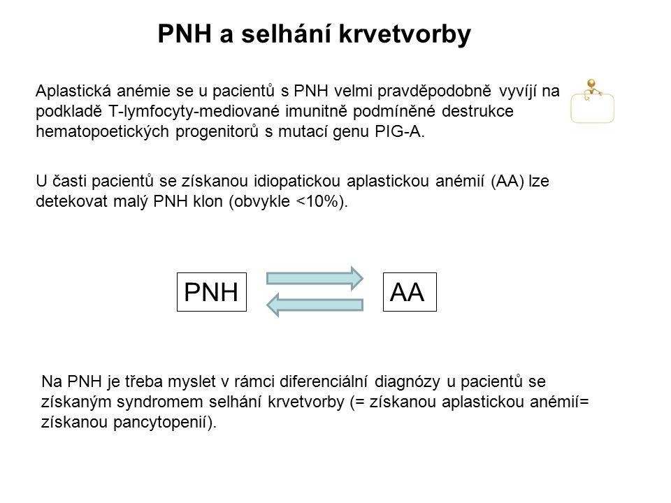 PNH a selhání krvetvorby
