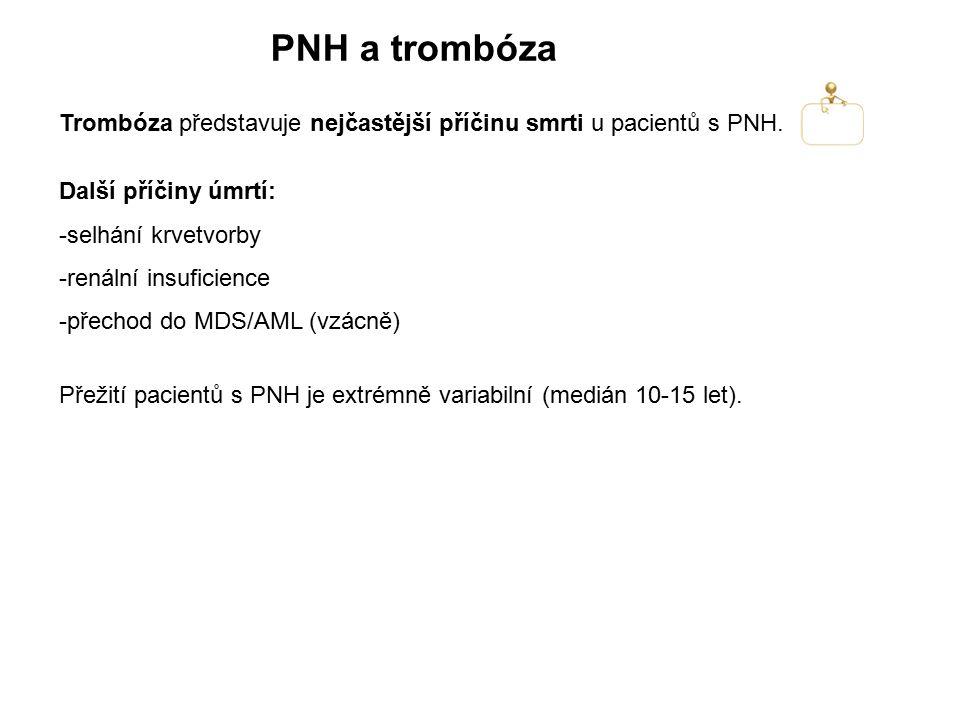 PNH a trombóza Trombóza představuje nejčastější příčinu smrti u pacientů s PNH. Další příčiny úmrtí:
