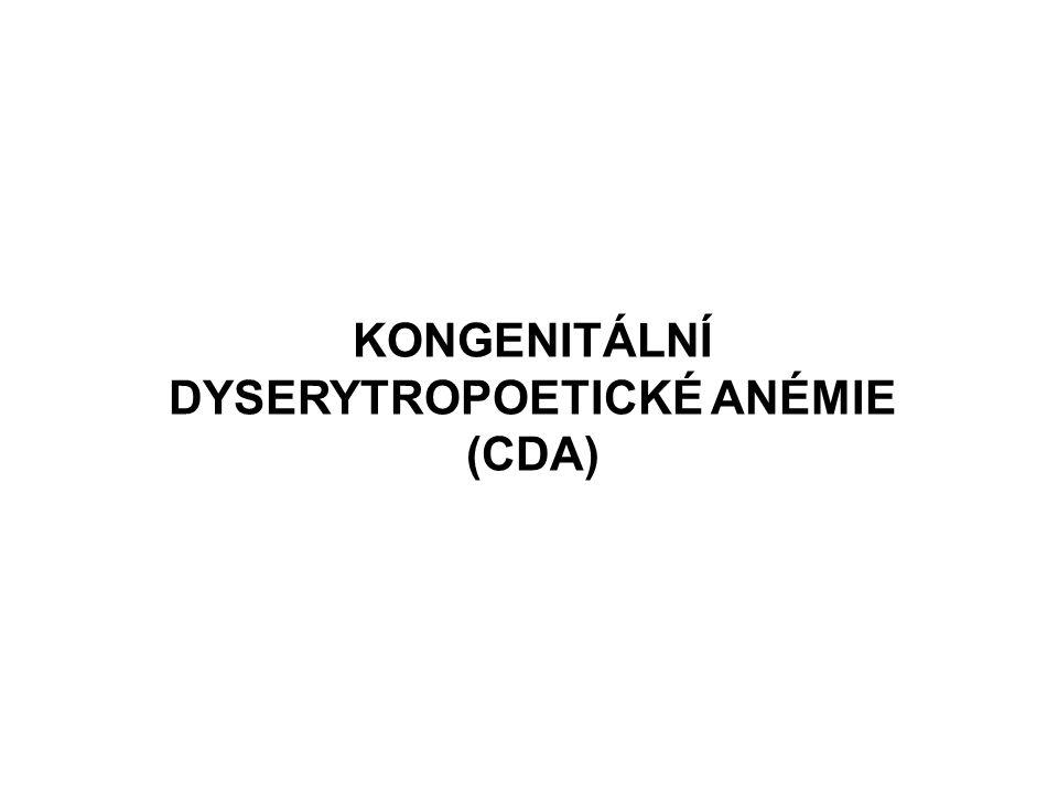 KONGENITÁLNÍ DYSERYTROPOETICKÉ ANÉMIE (CDA)