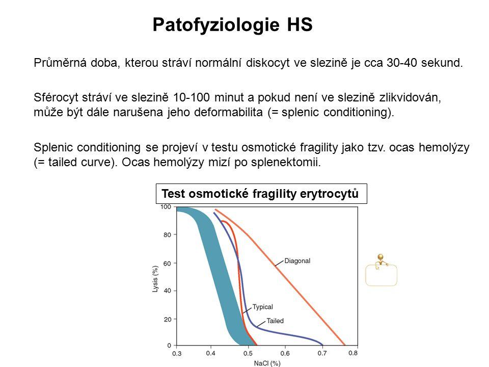 Patofyziologie HS Průměrná doba, kterou stráví normální diskocyt ve slezině je cca 30-40 sekund.