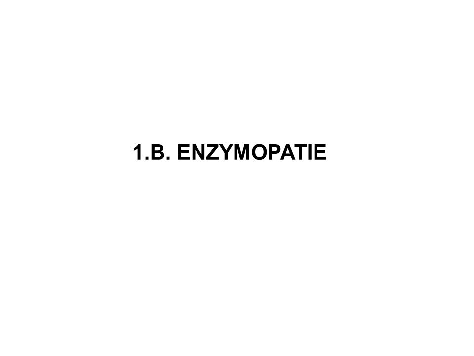1.B. ENZYMOPATIE