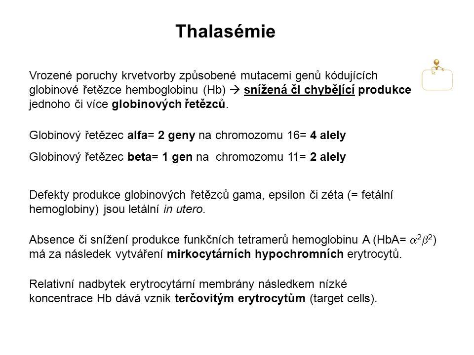 Thalasémie