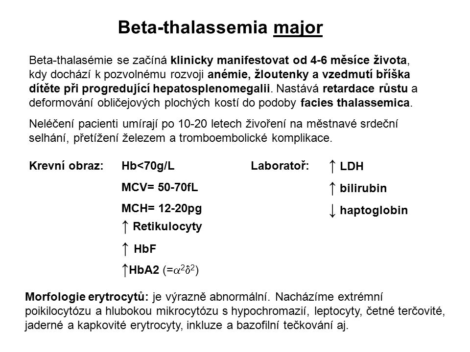Beta-thalassemia major