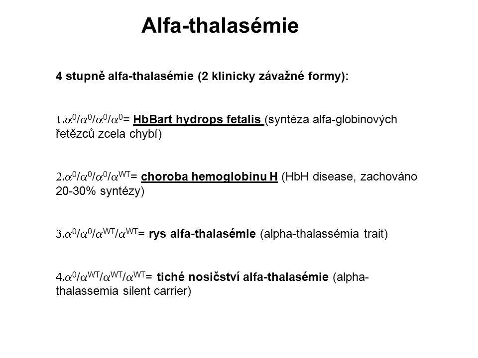 Alfa-thalasémie 4 stupně alfa-thalasémie (2 klinicky závažné formy):