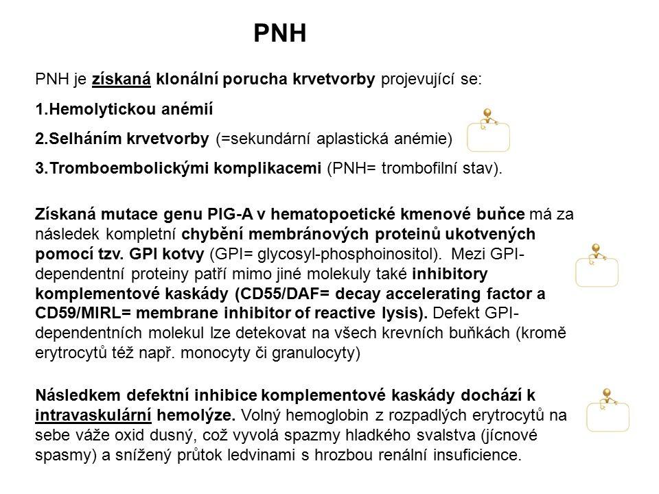PNH PNH je získaná klonální porucha krvetvorby projevující se: