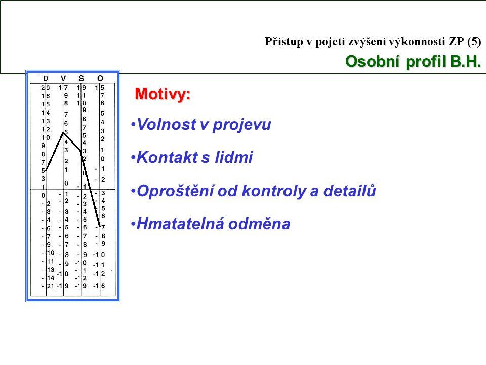 Přístup v pojetí zvýšení výkonnosti ZP (5) Osobní profil B.H.