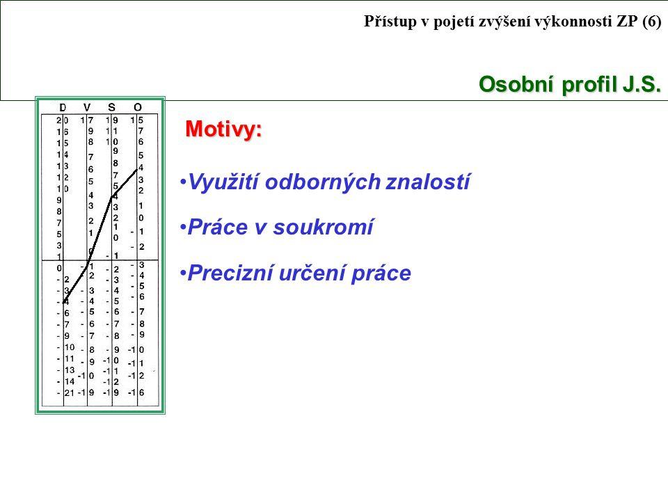 Přístup v pojetí zvýšení výkonnosti ZP (6) Osobní profil J.S.