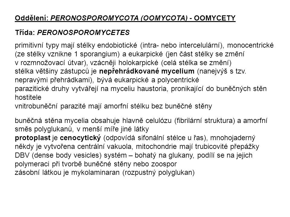 Oddělení: PERONOSPOROMYCOTA (OOMYCOTA) - OOMYCETY