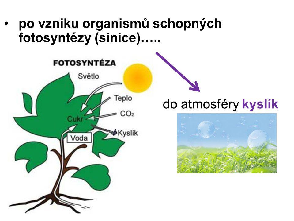 po vzniku organismů schopných fotosyntézy (sinice)…..
