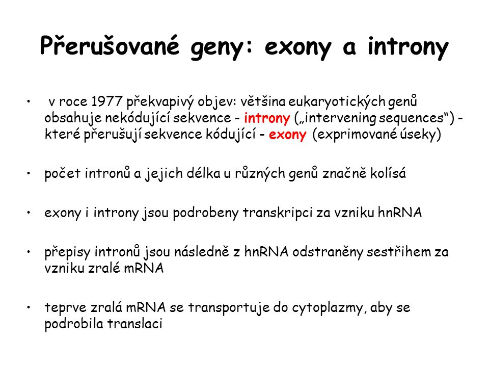 Přerušované geny: exony a introny