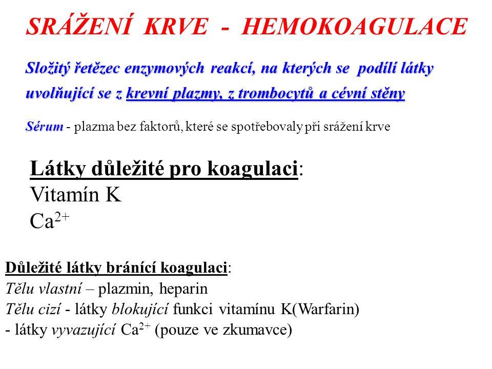 SRÁŽENÍ KRVE - HEMOKOAGULACE