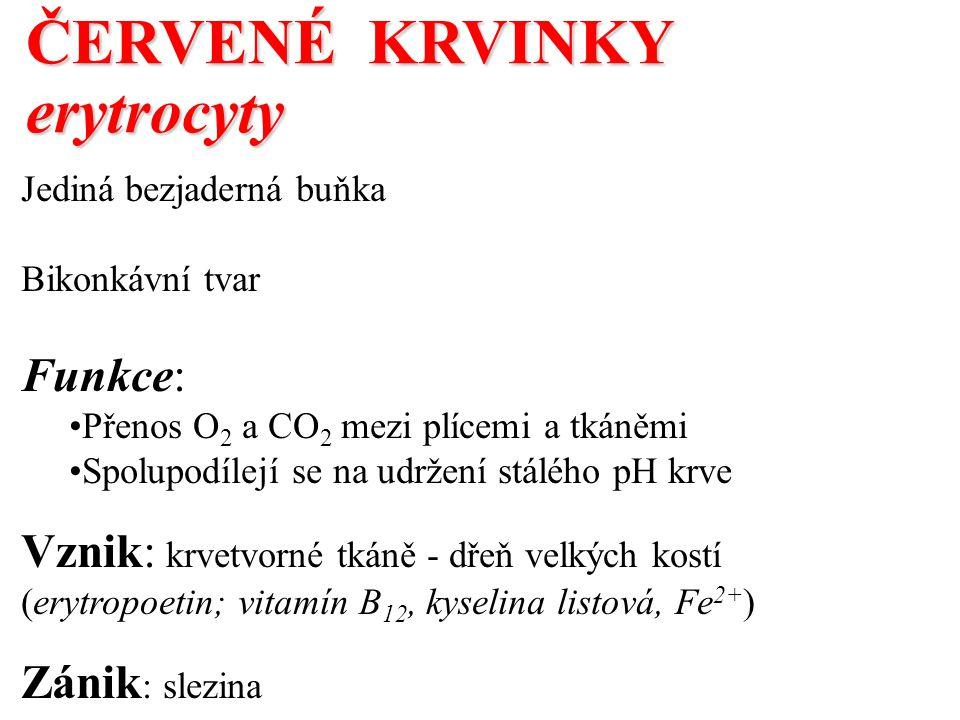 ČERVENÉ KRVINKY erytrocyty Funkce: