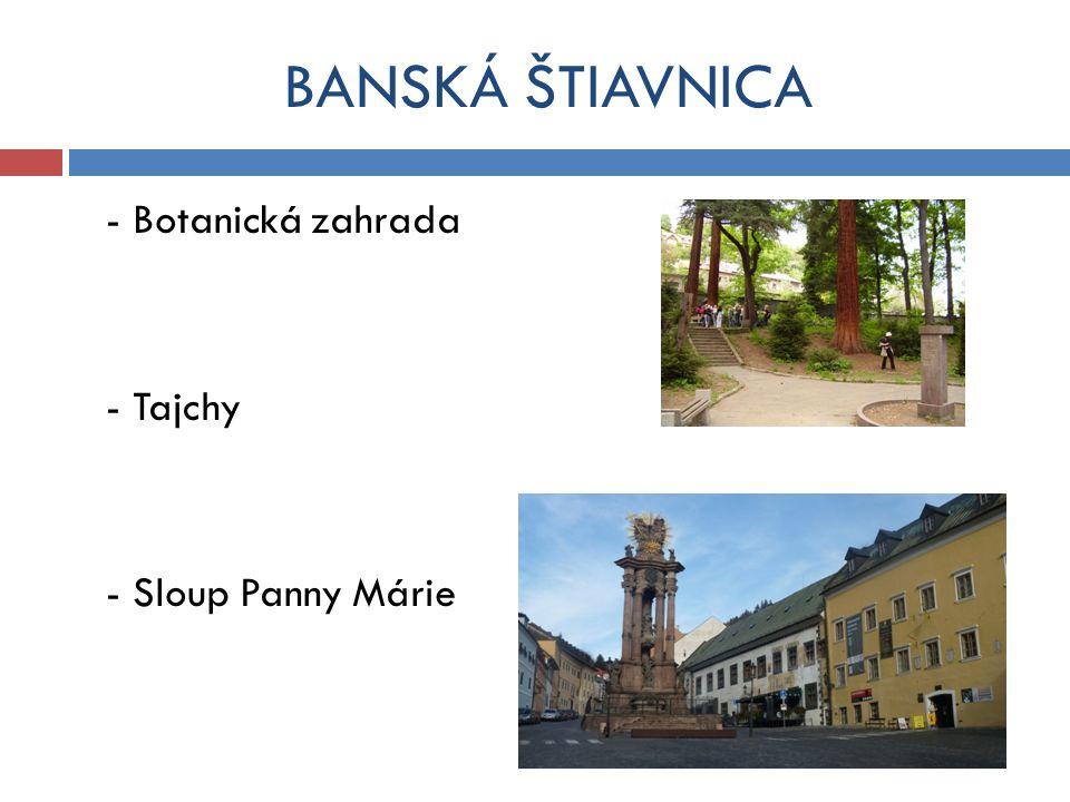 BANSKÁ ŠTIAVNICA - Botanická zahrada - Tajchy - Sloup Panny Márie