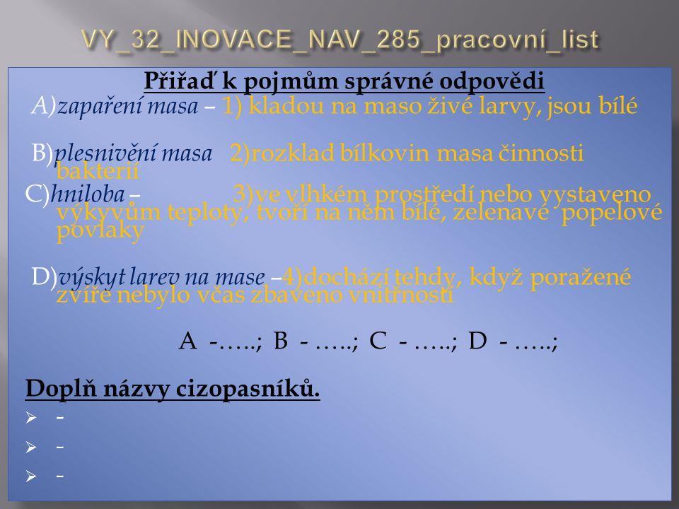 VY_32_INOVACE_NAV_285_pracovní_list